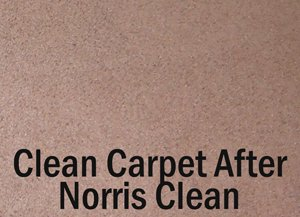carpet cleaning Indianapolis by Norris Cleaning